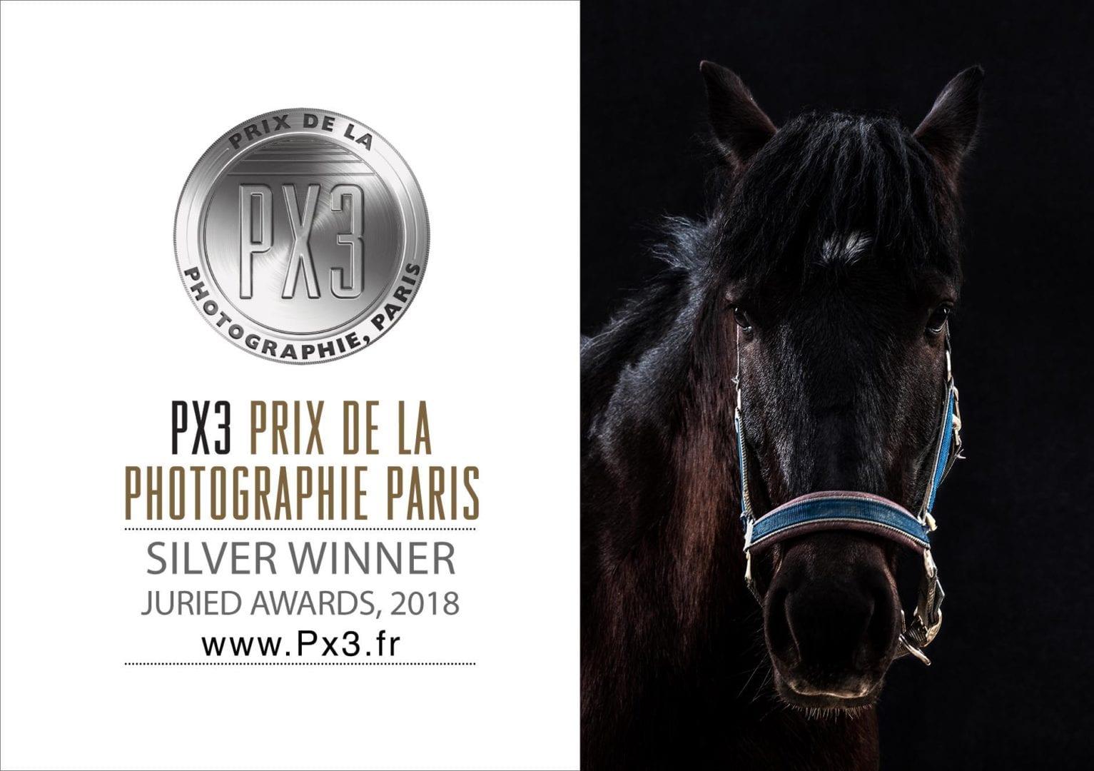Px3 Silver Award 2